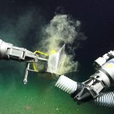 The arms of ROV Subastian sift clams out of the sediment at the ocean floor (about 700 meters down near Point Dume, California). These clams have a symbiotic relationship with a special type of bacteria found in these deep, nutrient rich waters.